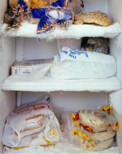 8c31/1242951343-fridge3.jpg