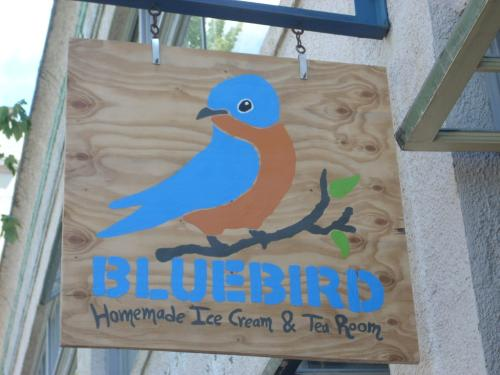f76c/1247176194-bluebird1.jpg