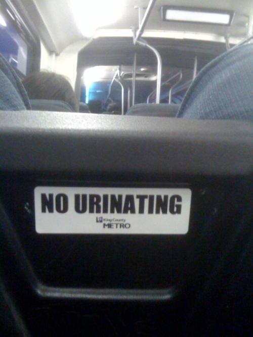 no_urinating.jpg