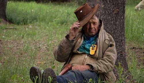 Film-Sweetgrass-570.jpg