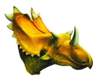utahceratops.jpg