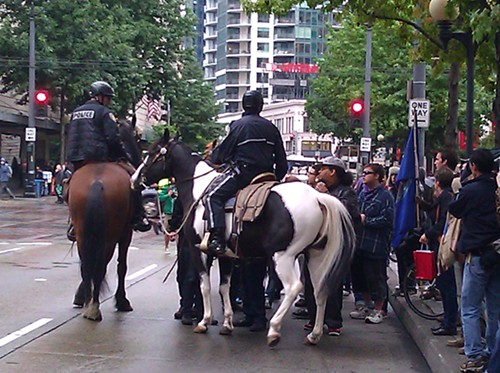 horses_and_protesters_by_cienna_madrid.jpg