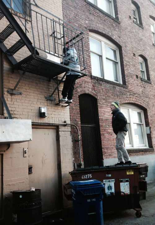These alleyway acrobats