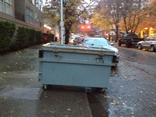 Heres the dumpster they were arguing over.