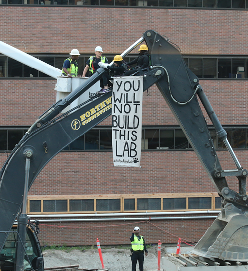 One activist is locked to an excavator (with another activist in a support role) to protest the construction of a new animal research lab at UW.