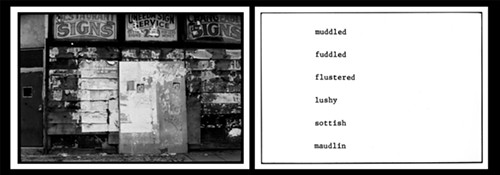 "In 1974-'75, Rosler took a walk down the Bowery, New York's skid row, and photographed it in the style of the American documentary tradition, which was sinking into a clichéd form of  ""liberal documentary."" But her images, unlike traditional humanist documentary, showed storefronts without any people. Pairing her photos with widely recognized words for drunks and drunkenness, she provocatively called the work <em>The Bowery in two inadequate descriptive systems</em>. Her point—spelled out in her critique of documentary written a few years later—diagnosed the status quo: ""Documentary, as we know it, carries (old) information about a group of powerless people to another group addressed as socially powerful."" Her essay, ending on a positive note, called for a newly invigorated documentary. This is a detail from that artwork, <em>The Bowery in two inadequate descriptive systems</em>."